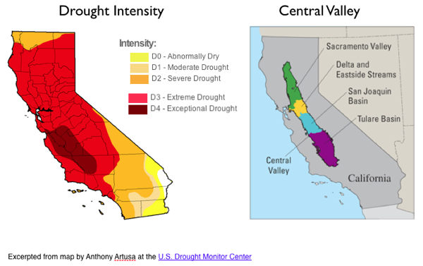 Drought Central Valley