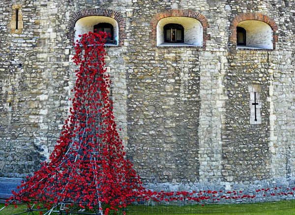 Poppies Londontower