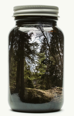 Artist's Childhood In Jar