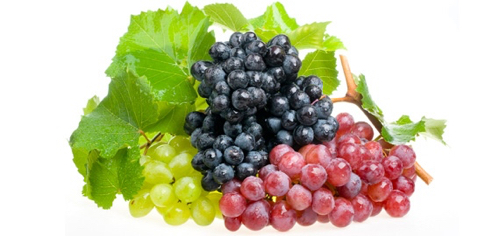 Grapes-Bunches