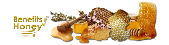 Logo-Benefits-Of-Honey-1