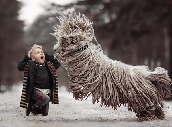 Mop-Dog+Boy-