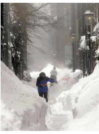 Boston Blizzard