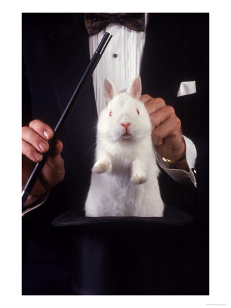 ~Magician-Pulls-Rabbit-Out-Of-Hat