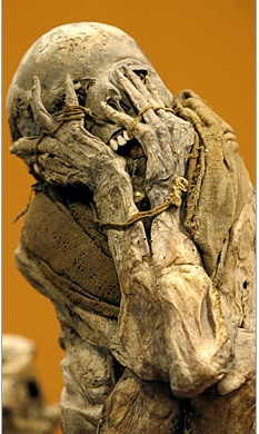&#160; 600 Year Old Mummy