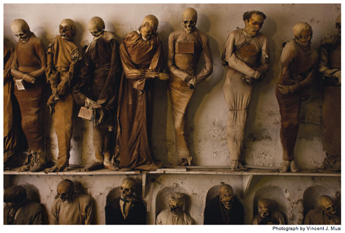  Sicilian Mummies