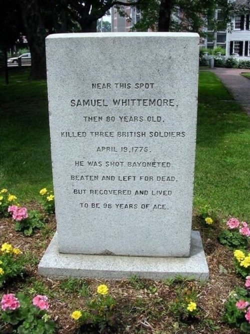 Funnytombstone Revolutionary Whittmore